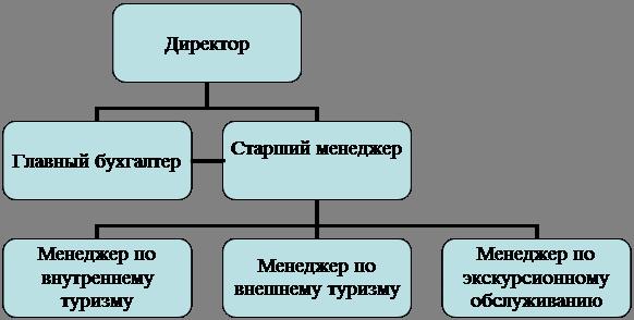 структура ООО «Агентство